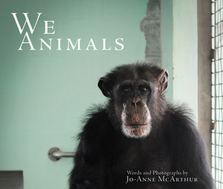 We Animals (2013)