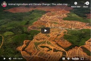 Animal Agriculture and Climate Change