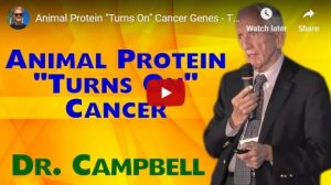 Animal Protein Turns On Cancer Genes