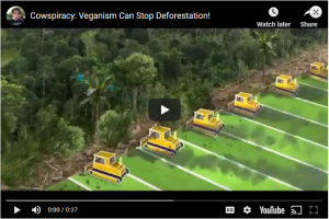 Cowspiracy - Veganism Can Stop Deforestation!