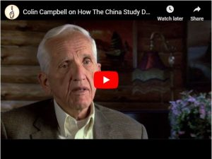 How The China Study Demonstrates Cause & Effect